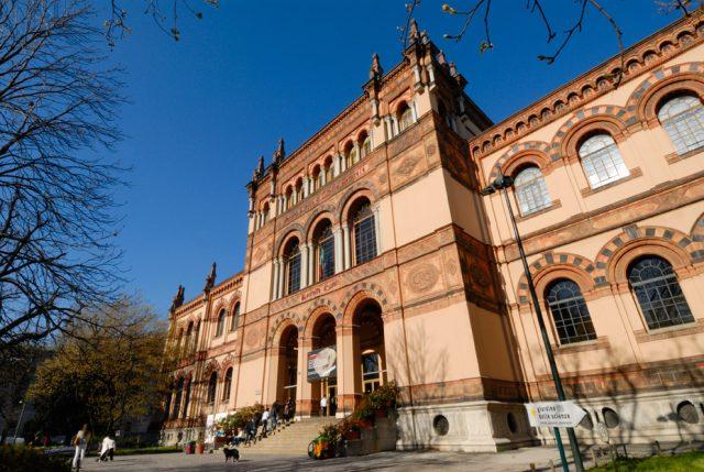 Museo di Storia Naturale a Milano uno dei più importanti d'Europa!