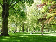 Milano, lo Smart Park Segantini è il nuovo parco tecnologico della città
