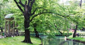 Picnic e grigliate a Milano: ecco i parchi e i giardini dove organizzarli!