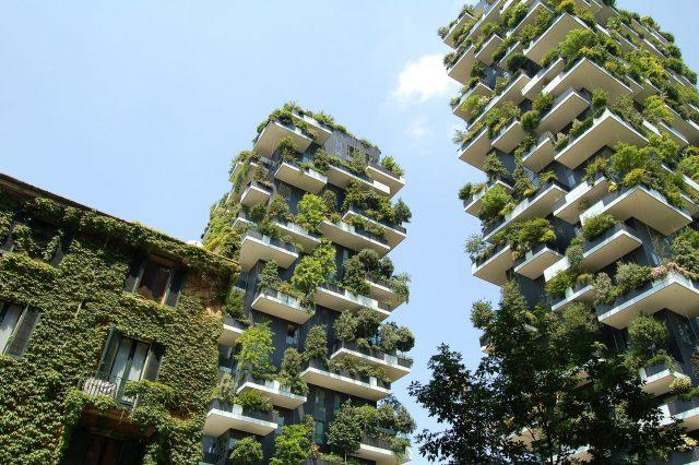 Biblioteca degli alberi a Milano, in arrivo all'ombra del Bosco Verticale
