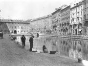 Progetti di Boeri e Zucchi a Milano: vince il Conte Verde di Stefano Boeri!