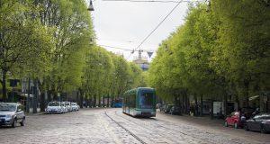 Milano, gli alberi saranno tutelati come bene comune