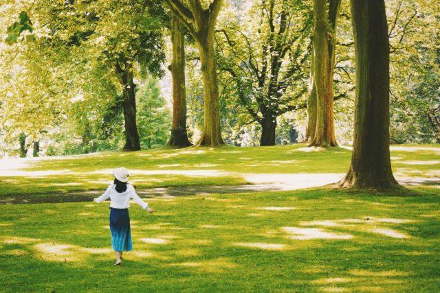 Il parco inaccessibile di Milano: dall'Anfiteatro al sito archeologico